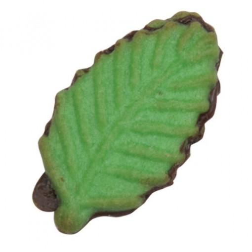 pistachio-leaf-00022